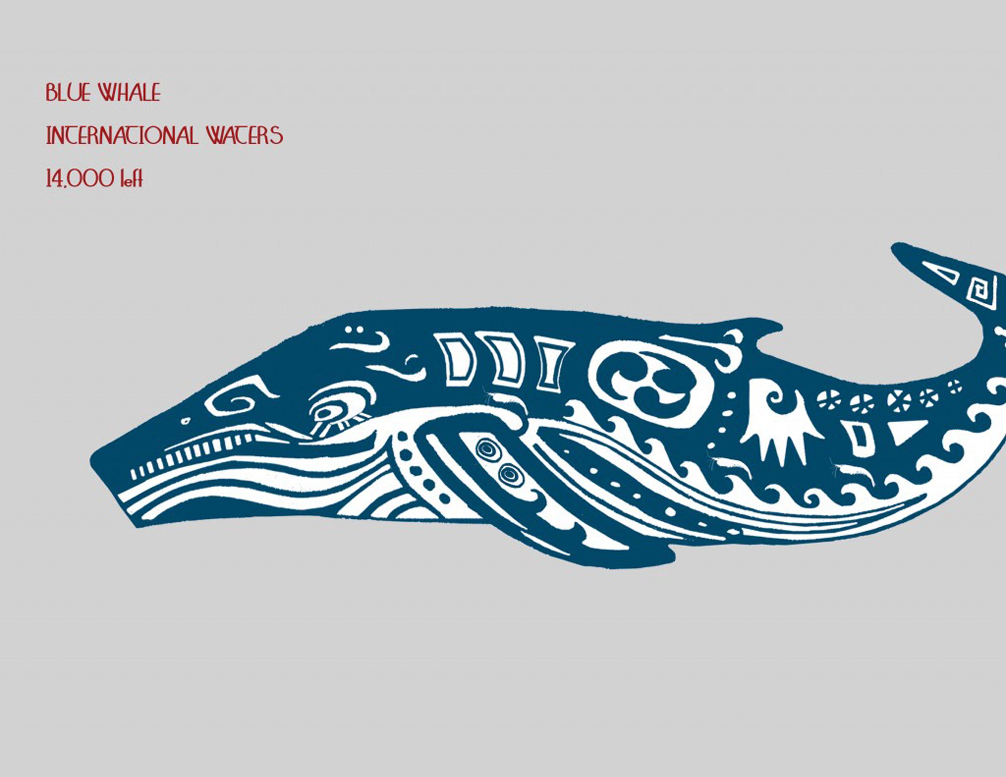 10a-blue-whale