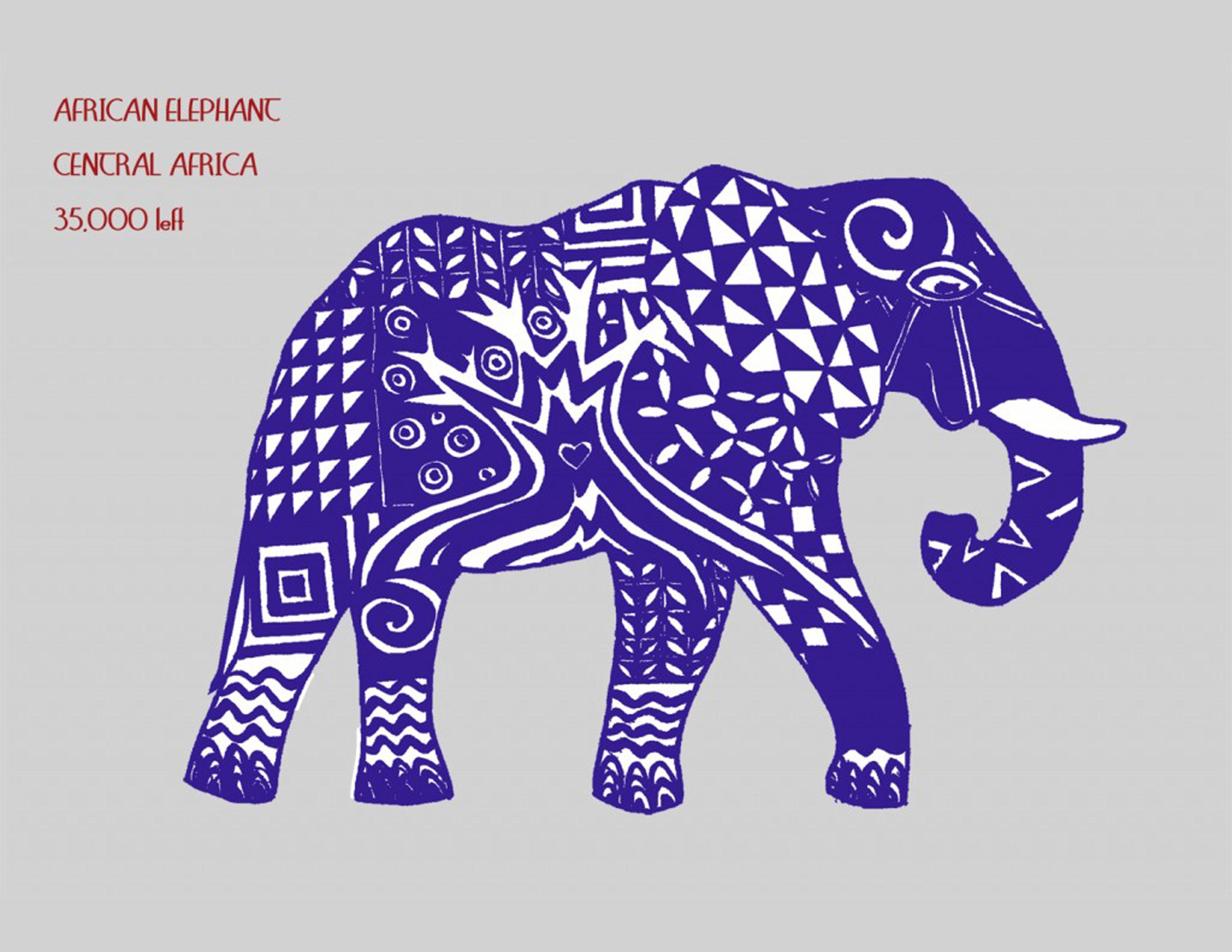 11a-african-elephant