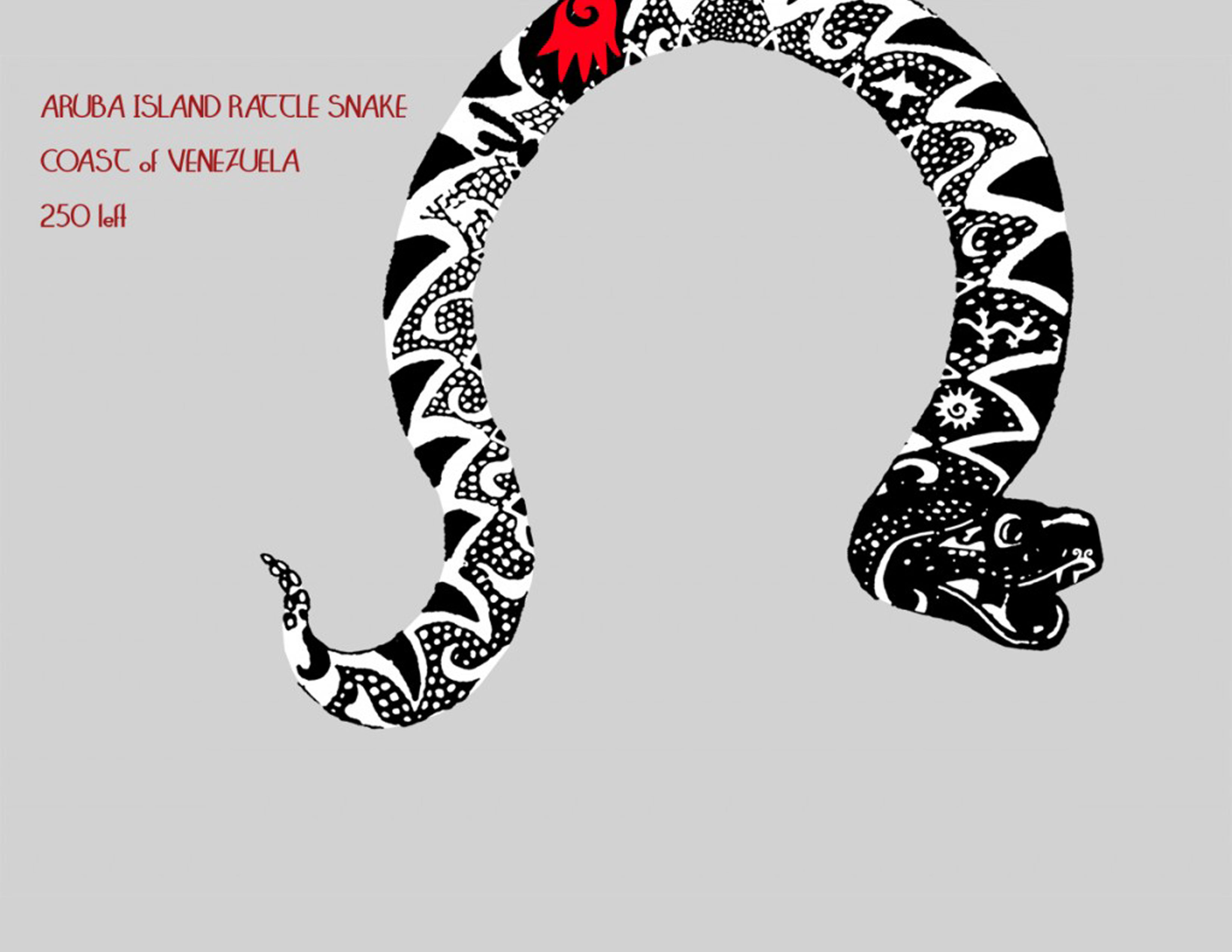 14a-aruba-snake